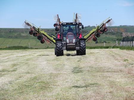 Grass Silage 3